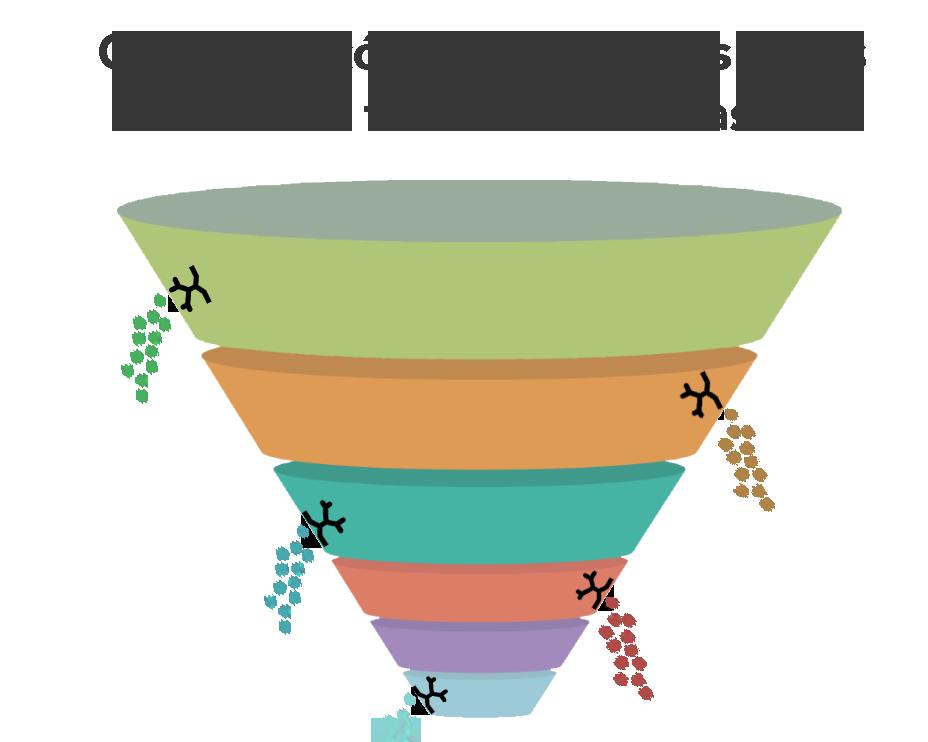 Funnel de Marketing y Ventas Leak .png